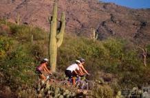 suguaro-cycling